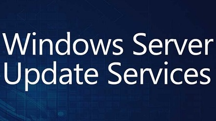Instalación Servidor Windows Server Update Services