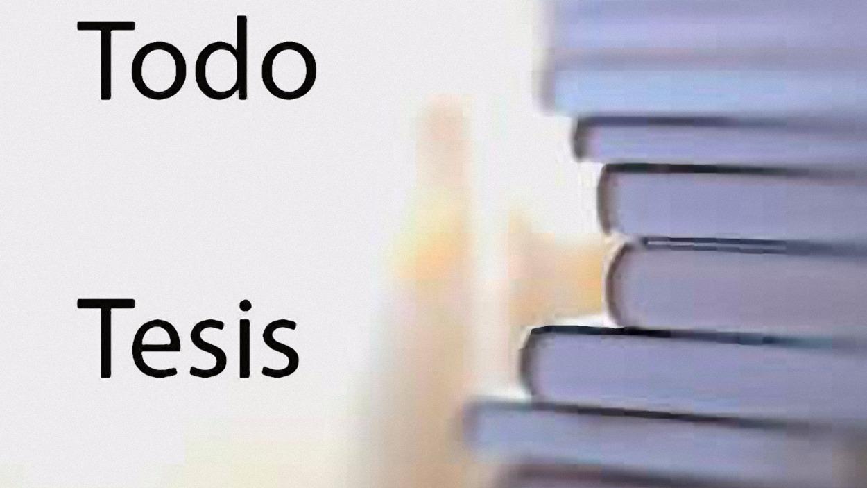 Redacción de textos, tesis, tesinas, proyectos, estadisticas y traducciones