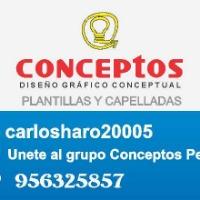 Carlos Haro Torres