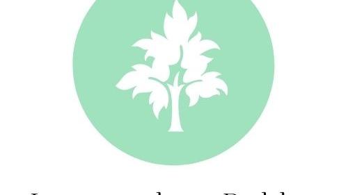 1 diseño profesional de logotipo exprés.